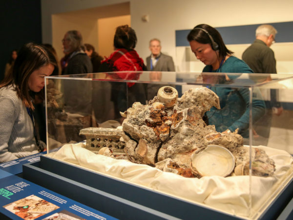 A woman listening to an audio tour looks at a concretion of broken porcelain and sea matter.